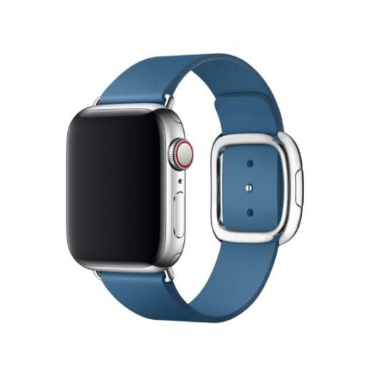Apple 40mm Modern Buckle - Cape Cod Blue Medium